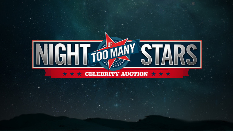 NIGHT OF TOO MANY STARS - SUPPORTING AUTISM PROGRAMS